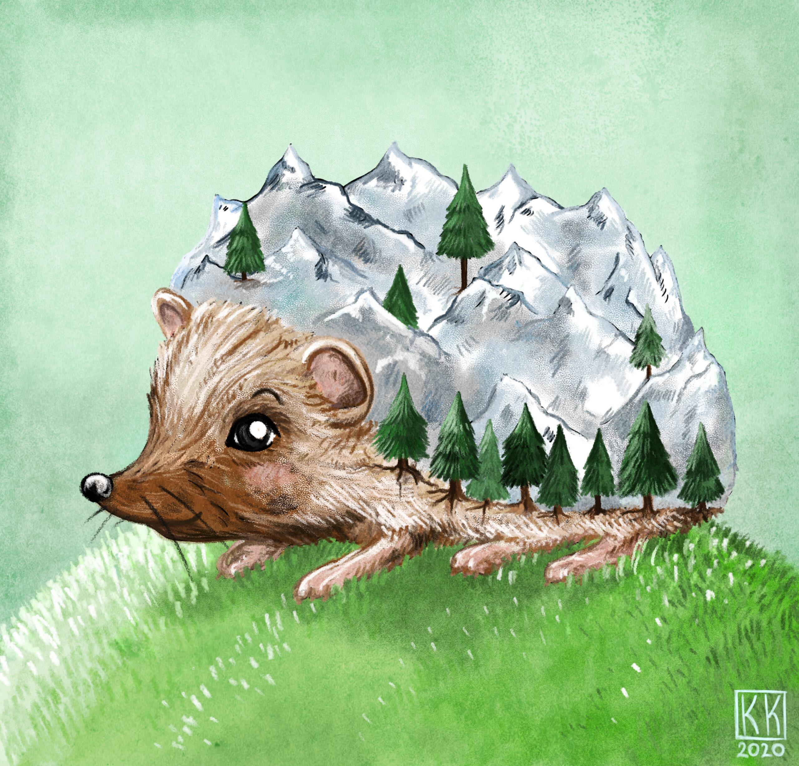 Mountain Hedgehog